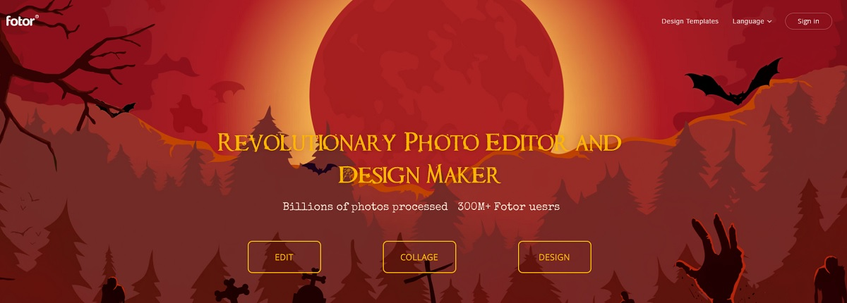 fotor free online photo editors