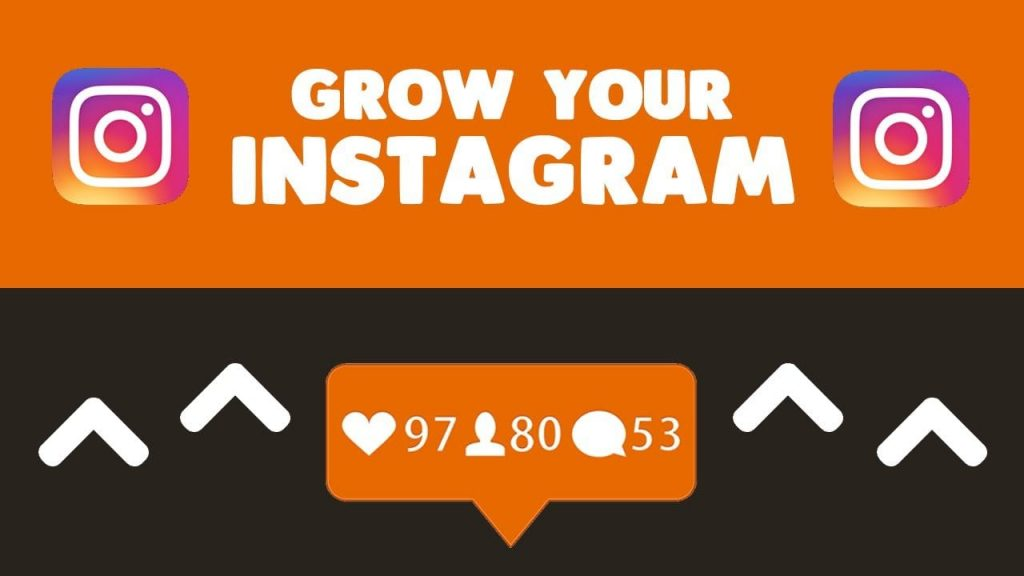 IG growth followers