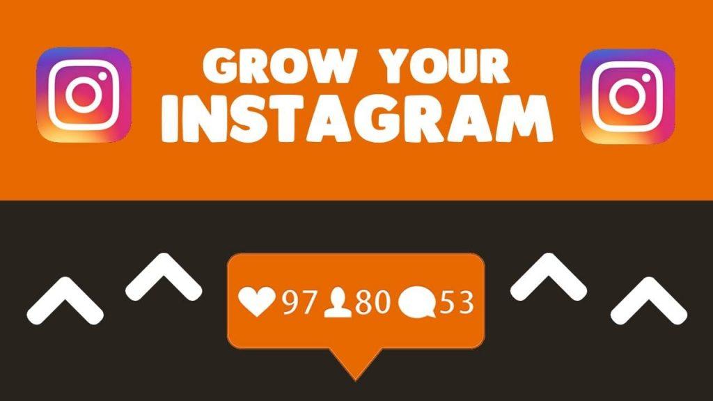 IG growth followers