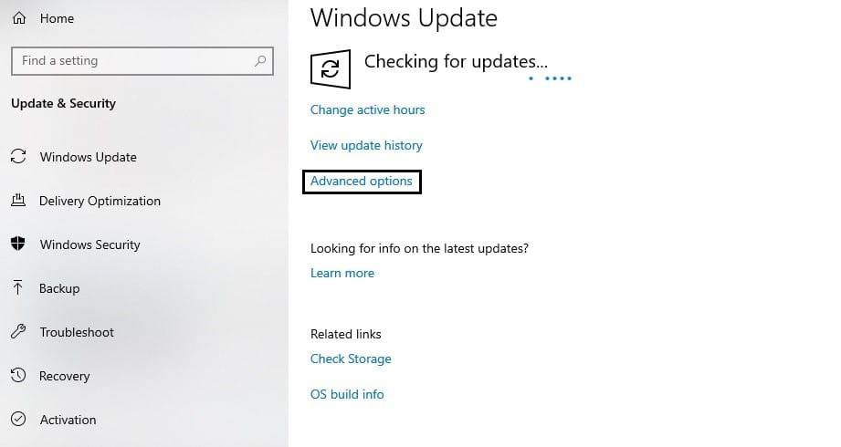 window update Advanced Options