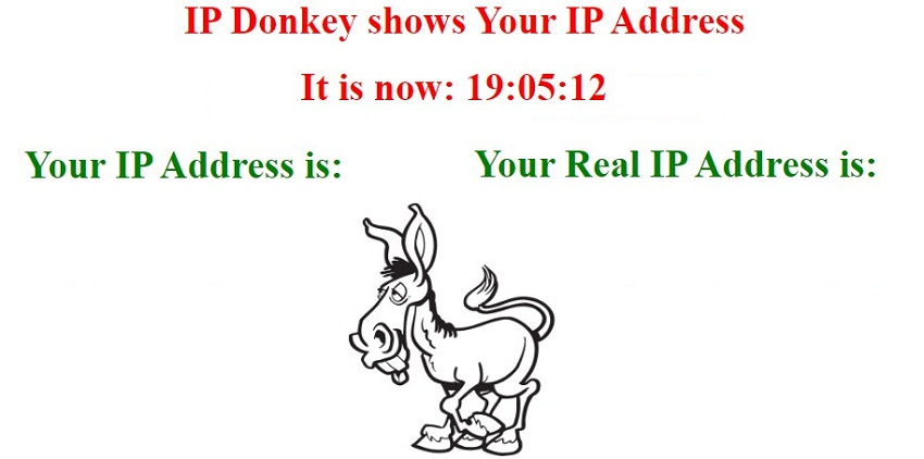 IP Donkey over view